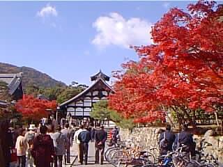 http://www.digistats.net/image/2002_11/trj.jpg