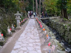 http://www.digistats.net/image/20041121_k_1.jpg