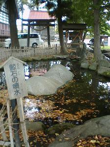http://www.digistats.net/image/2007_01/hakuchou2.jpg