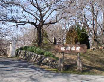 http://www.digistats.net/image/2007_01/kiji2.jpg