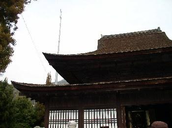 http://www.digistats.net/image/2007_01/tk4.jpg