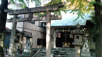 http://www.digistats.net/image/2008/12/shinobu.jpg