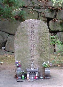 http://www.digistats.net/image/2009/09/hideyori.jpg