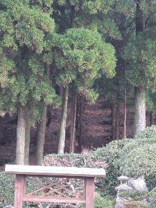 http://www.digistats.net/image/2010/01/kikkou.jpg