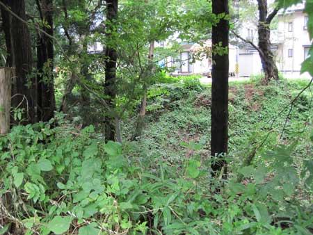 http://www.digistats.net/image/2010/09/abe_03.jpg