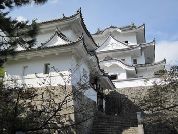 http://www.digistats.net/image/2010/12/ueno_01.jpg