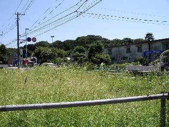 http://www.digistats.net/usakoji/m/image/kubou22.jpg
