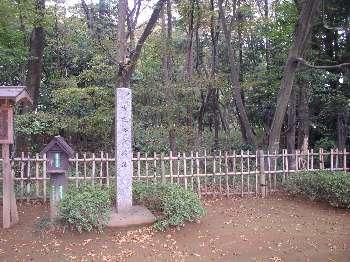 http://www.digistats.net/usakoji/shrine/image/koga_kubou2.jpg