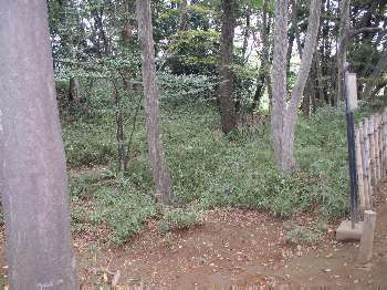 http://www.digistats.net/usakoji/shrine/image/koga_kubou3.jpg
